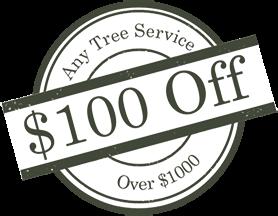 $100 off any tree service